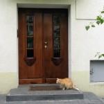 Renowacja drewnianych drzwi